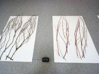 Ausstellung-Fluegelschlaege-03